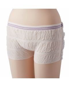 Protection Plus Mesh Incontinence Underpants